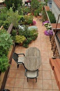 Terrasse - aout 2010 - Clic pour voir plus