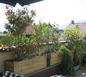 fabriquer des jardini res en bois pour les nuls vialbost. Black Bedroom Furniture Sets. Home Design Ideas