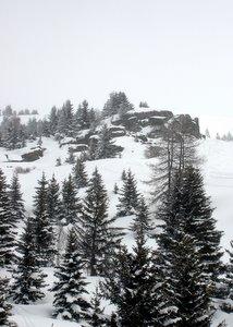 Neige depuis le télésiège des Jeux - Valmenier