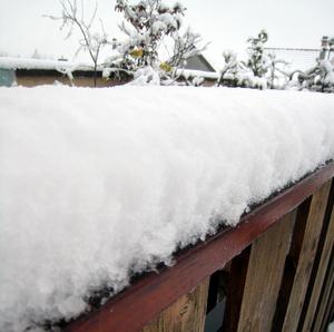 8 décembre 2008 - 6 cm de neige