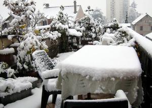 Neige 8 décembre 2008
